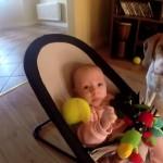 赤ちゃんを泣かせてしまい、代わりにおもちゃをたくさん持ってきてあやす犬の姿にほっこり*